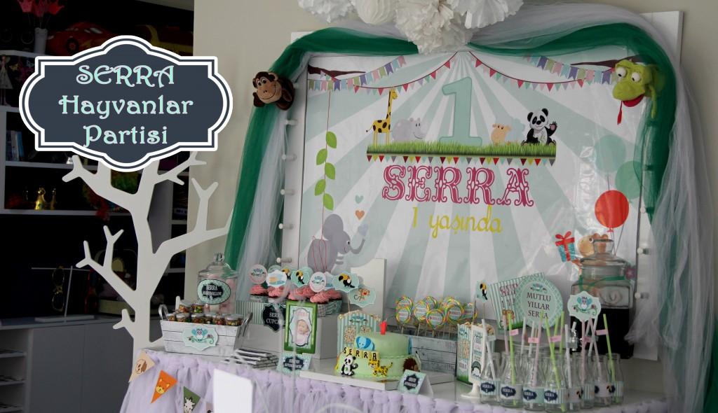 Bebek doğum günü organizasyon
