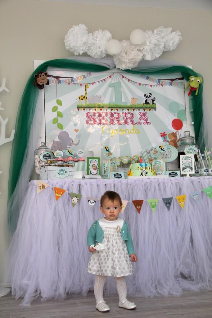 Bebek doğum günü organizasyon ankara